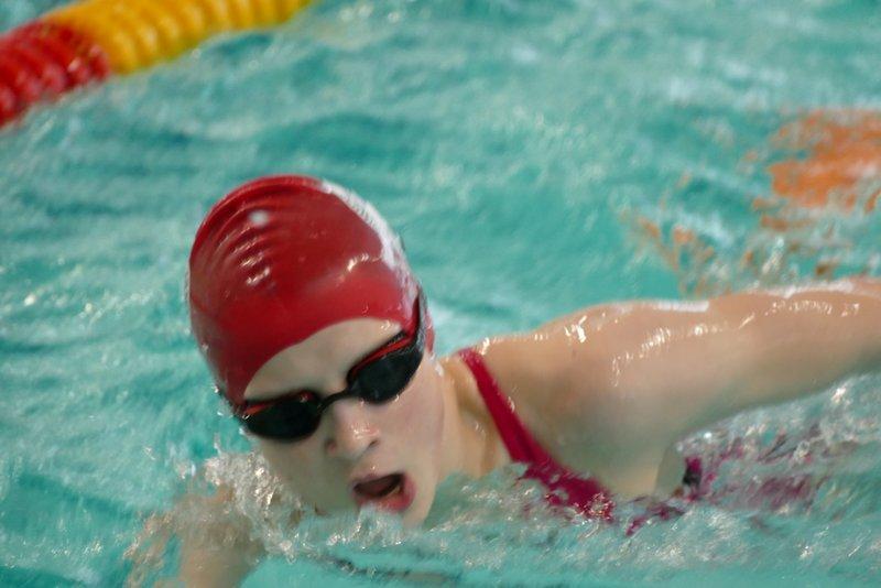 Neeel Labudda schwimmend Foto Gerd Rapior
